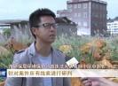 晋江新闻2018-11-08