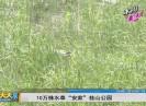 新闻天天报2019-03-03