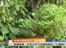 新闻天天报2019-03-14