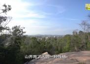 【老闽南】寻山问水访英林