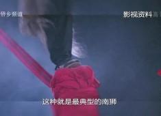老闽南:闽南雄风看舞狮