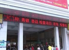 晋江新闻2017-08-31