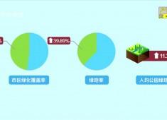 【聚焦晋江】晋江:用生态底色绘就绿色家园
