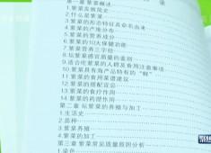 【聚焦晋江】李志江的紫菜经