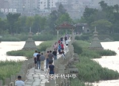 """【老闽南】晋水有""""桥""""通万域"""