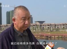 【聚焦晋江】晋江:水库变公园 有水就有景