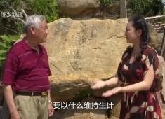 【老闽南】古碑刻诉说环保事