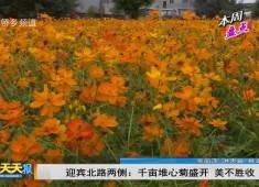 新闻天天报2019-01-06