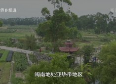 """【老闽南】闽南""""炣咸""""好味道"""