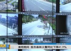 新闻天天报2019-04-08