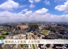 晋江新闻2019-05-08