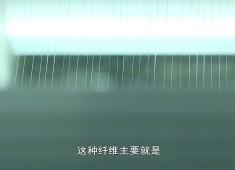 晋江财经报道2019-05-23