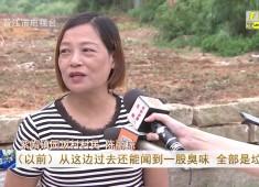 晋江新闻2019-08-15