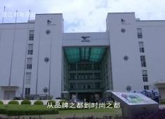 晋江财经报道2019-09-10