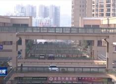 晋江新闻2019-10-08