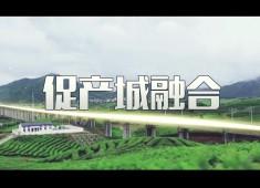 晋江新闻2019-11-08
