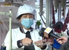 晋江财经报道2020-02-11