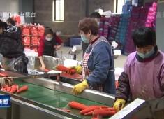 晋江新闻2020-02-05