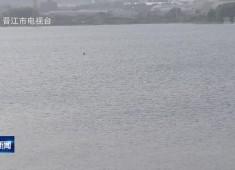 晋江新闻2020-05-17